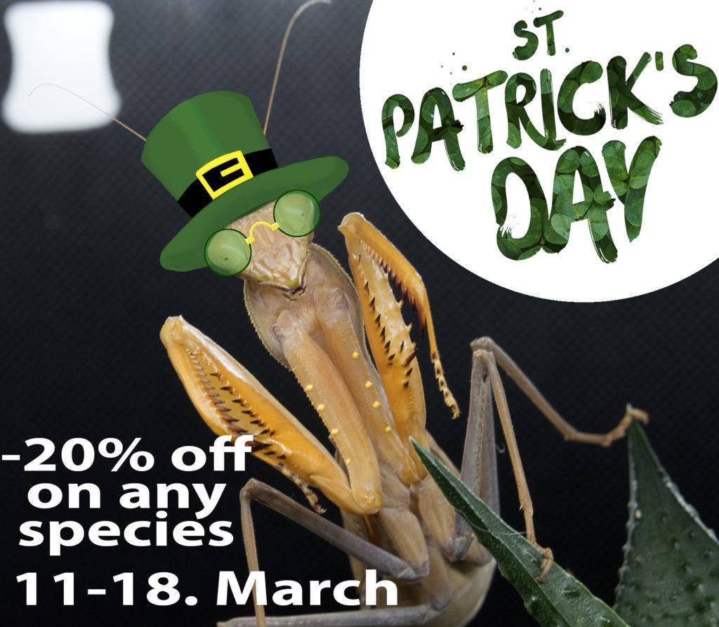 St. Patrick Day Promo