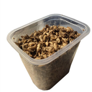 Calci worms - 250g pack.